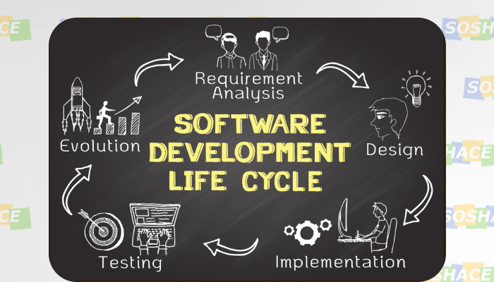 Software Development Cycle
