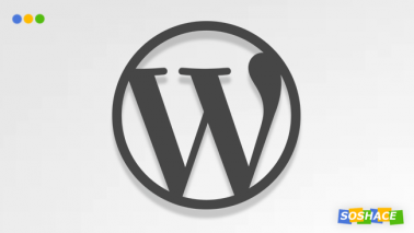WordPress for Non-Programmers: Introduction to the Web Development World