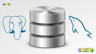 stylized logos of PostreSQL and MySQL