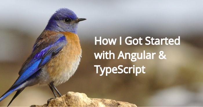 How I Got Started with Angular & TypeScript