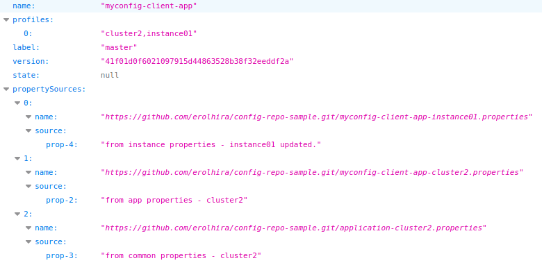Config Server Test
