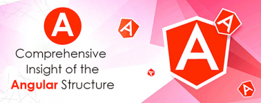 A comprehensive insight of the Angular Structure