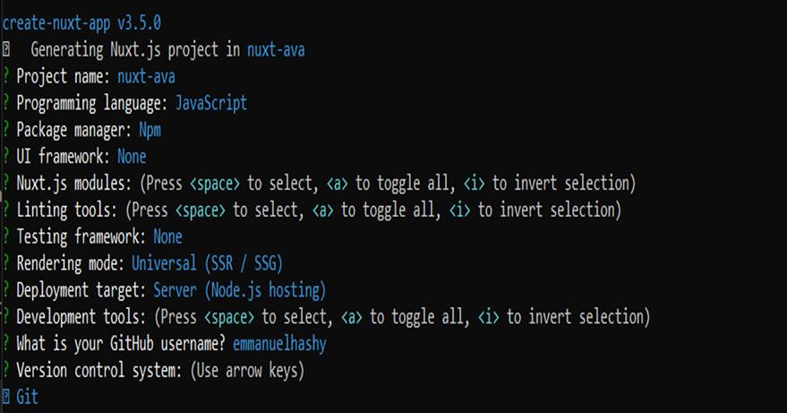 Nuxt project configuration photo