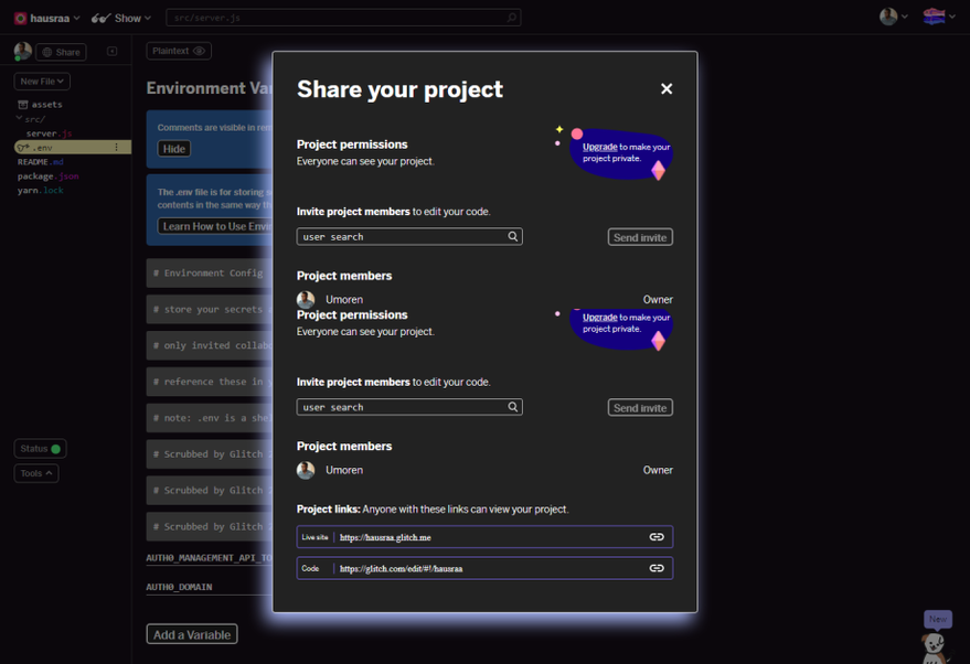 Share Glitch Project
