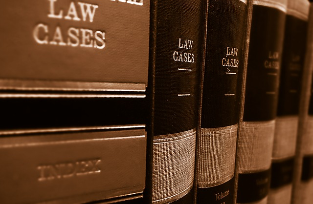 The USA legal cases, income tax and foreign employee or independent contractor status